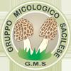 Gruppo Micologico Sacilese